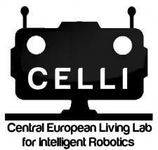 CELLI Logo